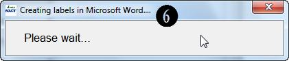 Creating Labels in MS Word Dialog Box